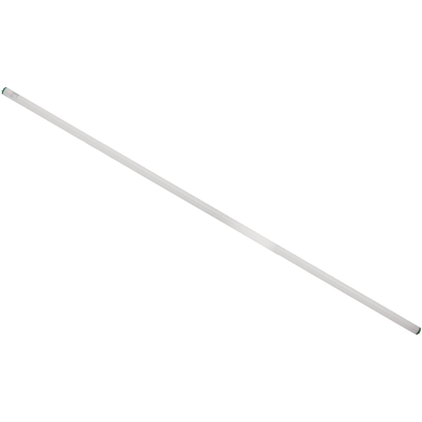Philips 75W 96 In. Cool White T12 Single Pin Fluorescent Tube Light Bulb (15-Pack) Image 4