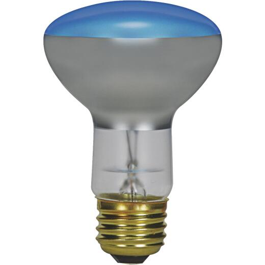 Satco 75W Frosted Medium Base R25 Incandescent Plant Light Bulb