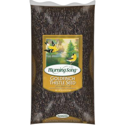 Morning Song 10 Lb. Nyjer Thistle Wild Bird Seed