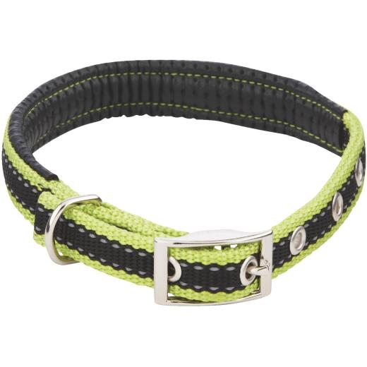 Westminster Pet Ruffin' it Reflective 16 In. Nylon Dog Collar