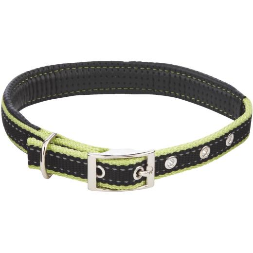 Westminster Pet Ruffin' it Reflective 20 In. Nylon Dog Collar
