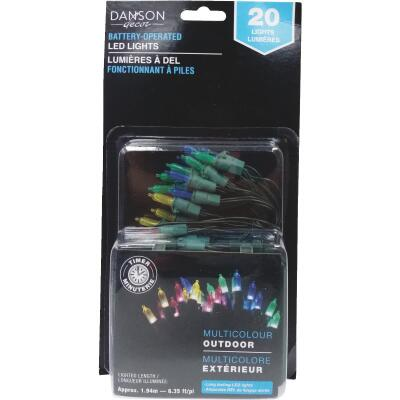 Danson Decor Multi 20-Bulb Mini LED Battery Operated Light Set